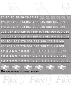 Class 25 TOPS Numbersets & Detailing