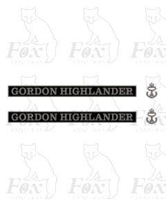 55016 GORDON HIGHLANDER