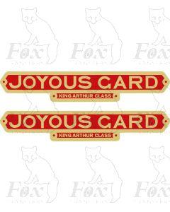 30741  JOYOUS GARD