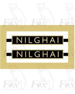 1019  NILGHAI