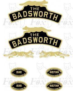 232  THE BADSWORTH
