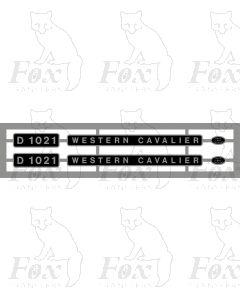 D1021 WESTERN CAVALIER