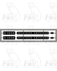 D1036 WESTERN EMPEROR
