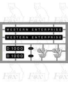D1000 WESTERN ENTERPRISE