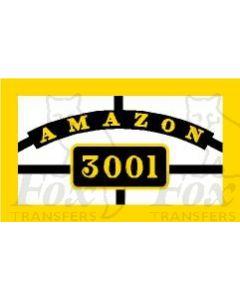 3001 AMAZON