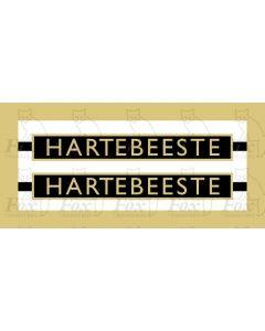 1009  HARTEBEESTE